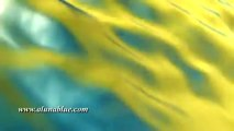 Animated Backgrounds - Abstract 0509 - Video Background - Video Loops