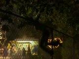 Texas Chainsaw 3D : Le film pour se faire peur cet été !