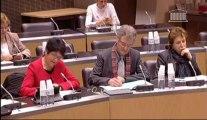 Table ronde environnement et droit minier - commission développement durable de l'Assemblée national - intervention de Sophie BRINGUY