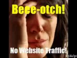affiliate funnel traffic exchanges  | Best GrapeVine Traffic Exchanges Review