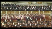 Nona Sinfonia de Beethoven - Segundo Movimento