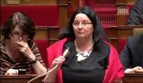 Amnistie - Explication de vote SRC sur motion de rejet UMP