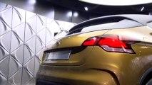 Citroën Concept High Rider - En direct du salon de  Genève 2010
