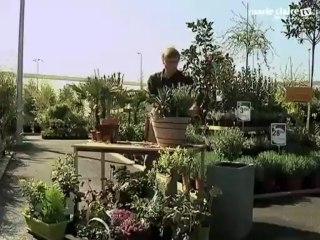 Video Balcon Plein Sud Quelles Plantes Choisir Sur Orange Videos