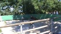 VERYGOOD LACOUR Sologn Pony 2012 Mâles de 3 ans Saut en liberté