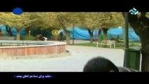 shayad 39