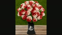 Ftd University Of Louisville Cardinals Rose Flowers  24 Stems  Vase Included