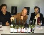 Beaujolais nouveau 2010 : les meilleurs vins en vidéo