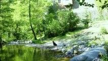 Achat immobilier en Ardèche pour Gîtes et chambres d'hôtes sans agence immobilière