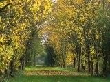 Gite maison vacances Charme Calme Nature Aisne Laon