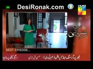 Tanhai - Episode 14 - May 29, 2013 - Part 4
