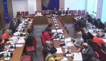 Commission du 29 mai 2013: Santé mentale et avenir de la psychiatrie