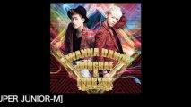 SUPER JUNIOR DONGHAE & EUNHYUK / Love That I Need feat. HENRY [SUPER JUNIOR-M]  (Short ver.)