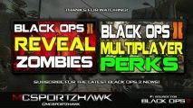 Black Ops 2 - Black Ops 2 Zombies: Teaser! Zombie Bloody Handprint! [COD BO2 Zombies HD]