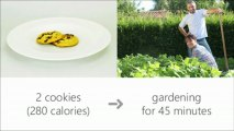 food calories in = fitness calories out