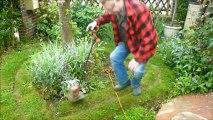 Rendez Vous aux Jardins 2013