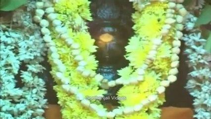 Guru Peyarchi - Sri Dakshinamurthy Navarathnamala Stothram