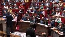Question au Gouvernement de Brigitte Allain sur les épandages aériens de pesticides