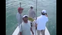 Sharks Requins Destroy Fisherman. ATTAQUE