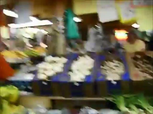 [日本語字幕]レン先生のアメリカ滞在レポート ザーンズ市場inペンシルバニア