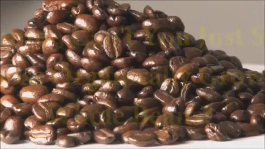 Nature's Gift Organic Coffee
