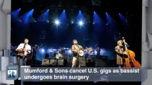 Music Album News Pop: Mumford & Sons Cancel U.S. Gigs as Bassist Undergoes Brain Surgery