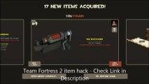 TF2 ITEM HACK Team Fortress 2 item hack Updated 2013