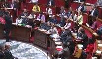 Question au gouvernement : Danielle AUROI questionne Monsieur Pascal CANFIN, Ministre délégué chargé du développement à propos du travail des enfants