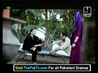Virassat - Episode 33 - June 13, 2013