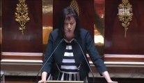 Intervention de Danielle AUROI, co-rapporteure de la Commission des Affaires européennes, concernant le statut de l'exception culturelle dans les projets de libre échange entre l'Union européenne et les Etats-Unis
