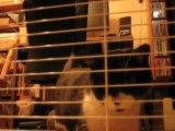 Le Lapin et les Chats à l'heure du repas de Pinou