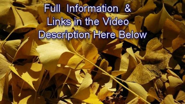 Cottone auctions-Jamie Lynn Sigler, Jamie Lynn Sigler Baby,