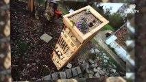 hôtels à insectes / Abris pour insectes à Hannut By Sw tv