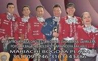 mariachis bogota,3117091246,mariachis en bogota,mariachis bogota baratos,mariachis bogota economicos,mariachis bogota precios,mariachis bogota norte,mariachis bogota suba,mariachis bogota chia