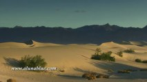 Stock Video - Stock Footage - Video Backgrounds - Dunes 05