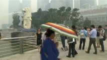 Indonesia and Singapore engulfed by forest fire smoke – video