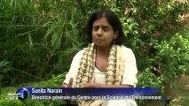Mousson en Inde: les autorités craignent des centaines de morts