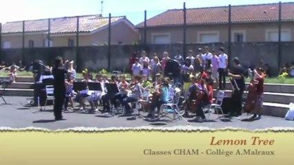 Fête de la musique 13' - Clg MALRAUX - Romans (26100)