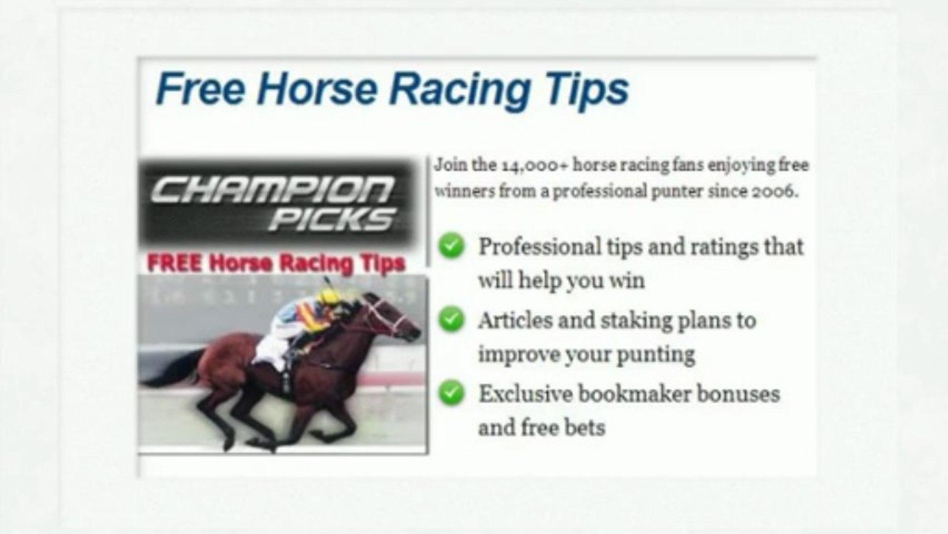 The Professional Punter Horse Racing Staking Plan