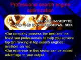 Search Engine Optimization Consultants