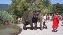 Les éléphants du cirque Medrano prennent la température du lac du Bourget