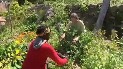 Parcours de vie d'Eric Escoffier, formateur en permaculture