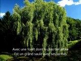 """Bonheur (Nouvelle version """"unplugged"""" !)"""