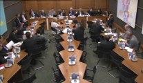 Intervention en commission du développement durable lors de l'audition de Pierre-franck CHEVET, Président de l'Autorité de Sûreté Nucléaire