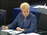 Hélène Flautre sur la Lituanie (3 juillet 2013)