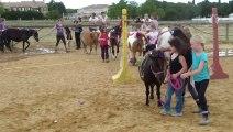 Concours déco poneys juin 2013