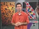 BIOLOGIA AULA 10 - INTERFASE, MITOSE E MEIOSE Parte 3  - YouTube
