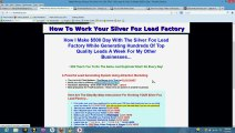 Liz's Step-By-Step Instructions for setting up Silver Fox Lead Factory.