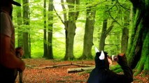 """GEILER BOCK aus dem Buch """"Axt im Wald"""" von Lars Kramer."""