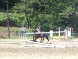 16-06-2013 concours d'équitation